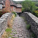 My England. Packhorse Bridge at Allerford by trish725