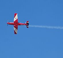 Aerobatic Flight by David Hunt