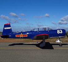 Blue Yak Warbird by David Hunt