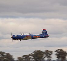 Low Pass by Yak Warbird by David Hunt