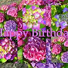 "Happy Birthday! featured in ""Waterlily, Lotus & Hydrangea Group"" by ©The Creative  Minds"