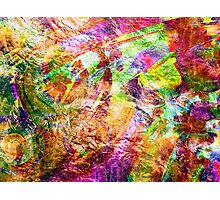Abstract Bouquet. Photographic Print