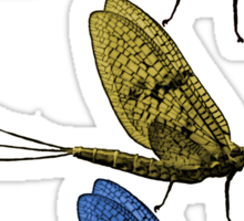 Fishfly Primary Sticker