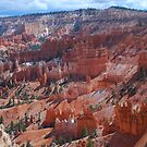 Canyon View by Barbara Manis