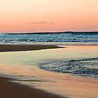 Surfing at Sunset, Shelly Beach, NSW by Nicolette Gregory
