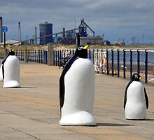 Redcar Penguins with Steel works in the background by robwhitehead