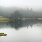 Rydal Mist by VoluntaryRanger
