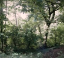 forest watercolour by saswilson