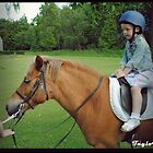Pony Rides for Princesses by hanza