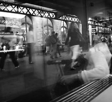 commuters by moyo