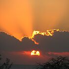 Sunrise in Mozambique by FFRPhoto