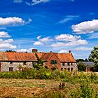 Old Barns at Pensthorpe by ArtforARMS