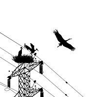 Family stork by Richard Laschon