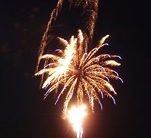 Fireworks on the Beach - Ocean City, NJ 3 by Colleen Shaffer