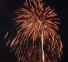Fireworks on the Beach - Ocean City, NJ 4 by Colleen Shaffer