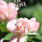 Thinking of You Rose Card by Corri Gryting Gutzman
