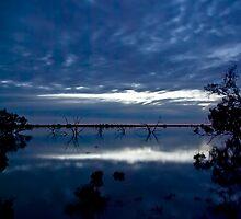 Lake Blues by Matt Harvey