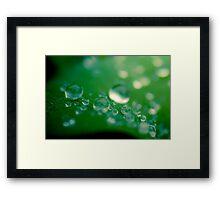 ...sprinkled... Framed Print