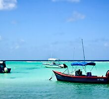 St. Lawrence Gap, Barbados by Tarrby