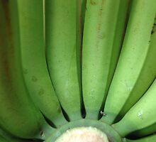 banana by bayu harsa