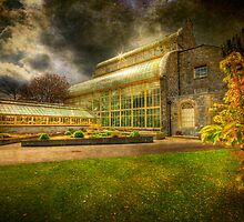 Glasshouse - Botanic Gardens - Dublin by Gerry Chaney