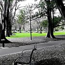 Park Bench, Melbourne by dozzam