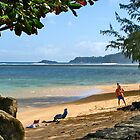 Anini Beach Park by David Davies