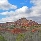 Palo Duro Canyon. Tx. by luv2hike