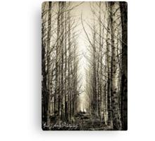 Silent Moments Canvas Print