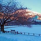 Winter by Lille Lungårdsvann by Annbjørg  Næss