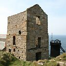 Cornish Tin Mine (5919) by Tony Payne