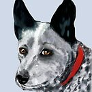 'Bluey' Australian Blue Heeler Pet Portrait by Trish Loader