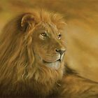 Panthera Leo - Lion - Monarch of the Animal Kingdom by Steven Paul Carlson