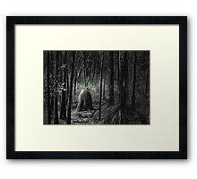 Wiradjuri Land Framed Print