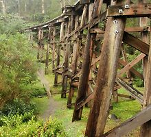 Trestle Bridge by Karen Lewis