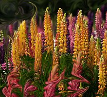 The Colorful World of Lupinus by Gordito73