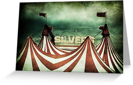 Freak Show by Andrew Paranavitana