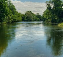 The River Leven-The Lower Reaches by VoluntaryRanger