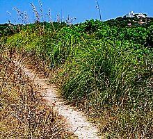 Dusty path by Spadgie