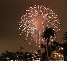 4th of july 2010-4 by epitome0