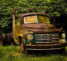 Rusty by photodivaanna