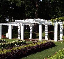 Lincoln Park Gardens by kkphoto1