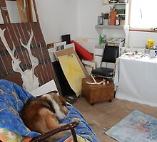 Studio with Wilson by Shirley McMahon