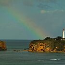 Nature's Spotlight, Airey's Inlet, Great Ocean Rd by Joe Mortelliti