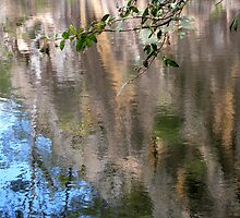 Reflections of a rock cliff in water. by Marilyn Baldey