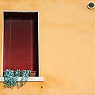 Window - Venice, Italy by Ruth Durose