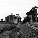 Kangaroo Flat Railway Station by Terri-Anne Kingsley