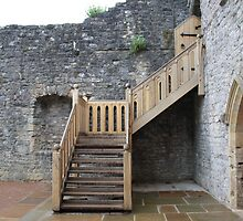 Old vs. New - Chepstow castle by StitchingDreams