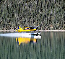 Pontoon Plane Landing  by Don Siebel