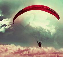 Always soar high, brave heart ! by queenenigma
